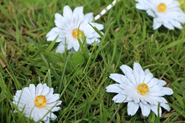 leather daisy hair accessories